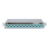 923969 - CCM SpiderLINE Patchpanel 1HE Alu PRO